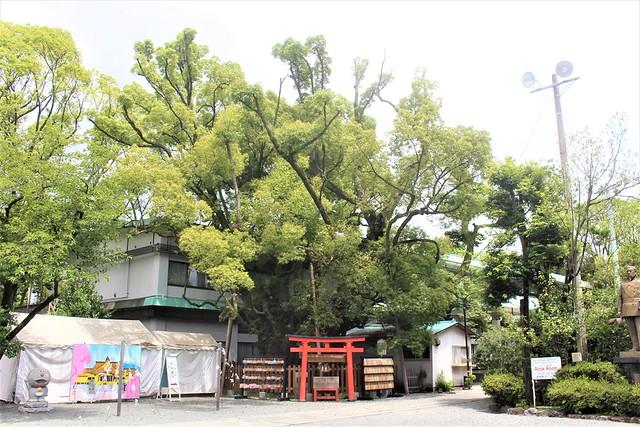 fujirokusho-gosyuin021