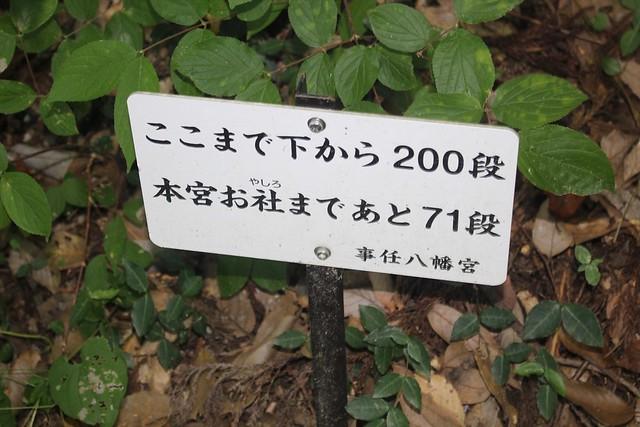 kotonomama-gosyuin017