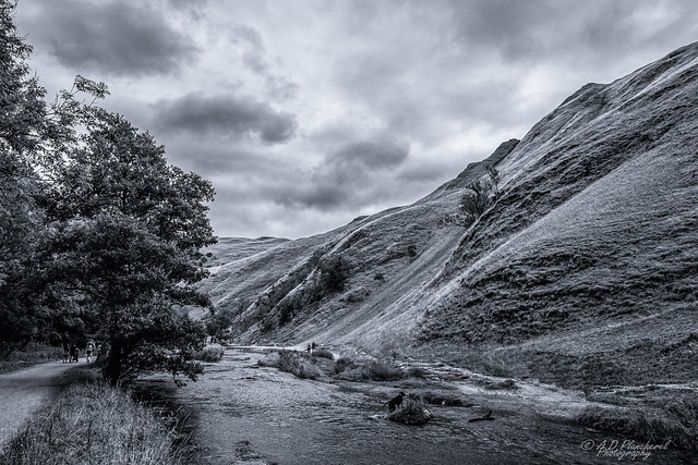 Deep in Dovedale