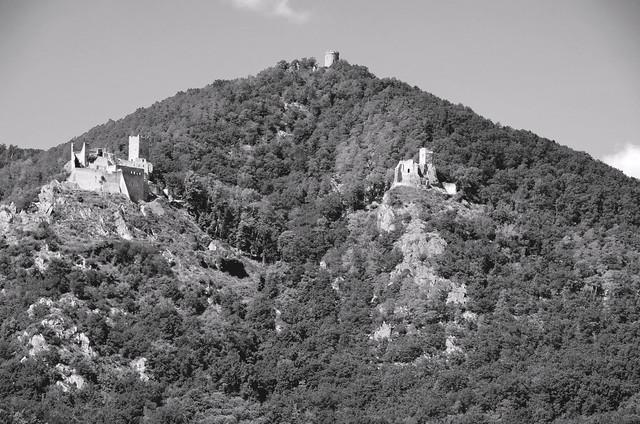 Les châteaux de Ribeauvillé