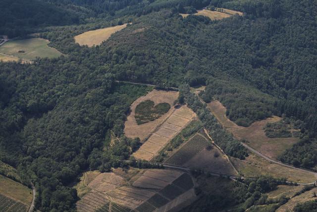 Coeur en Beaujolais