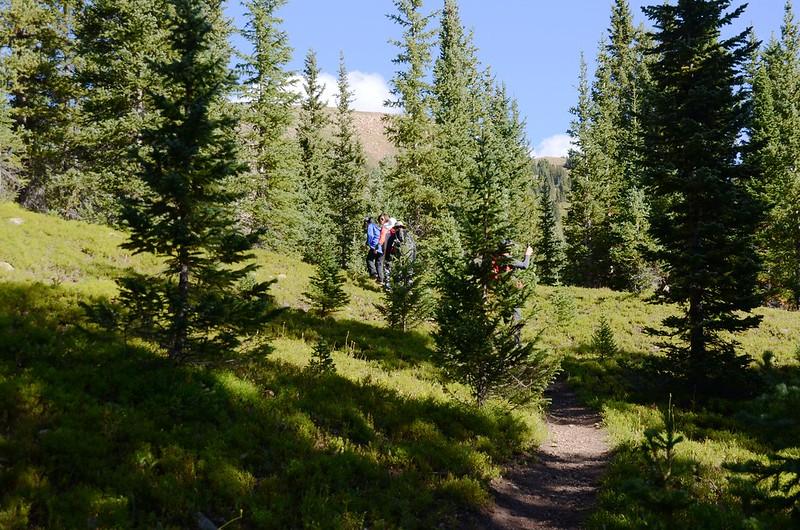 Current Creek Trail, Colorado (3)