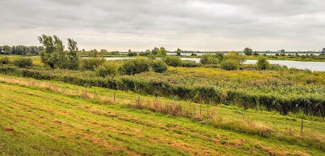 Tiendgorzen nature reserve on the South Holland island of Hoeksche Waard