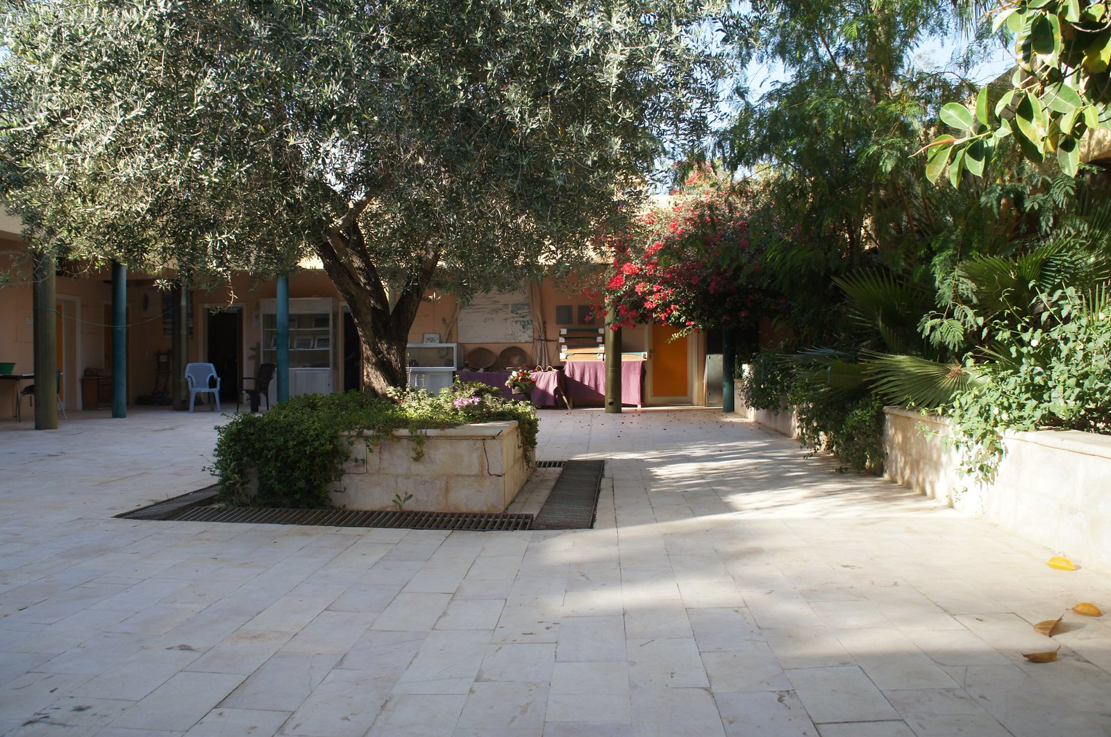The courtyard of the dig station.