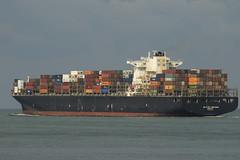 NAVIOS UNISON   Container Ship - Maasvlakte - Rotterdam