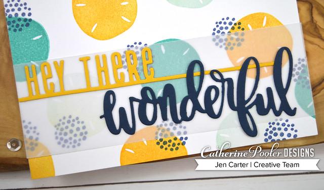 She Sells Seashells Ways to Say Hey Wonderful JenCarter Closeup