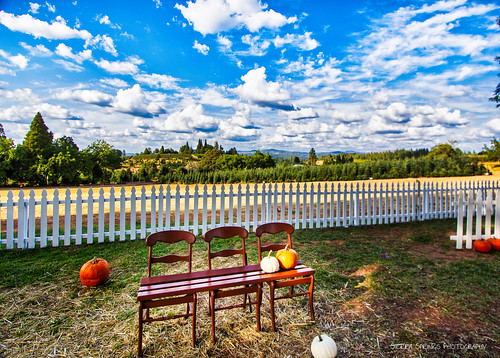 applehill karenschmautz sierraspringsphotography boavista fall autumn california camino pumpkins