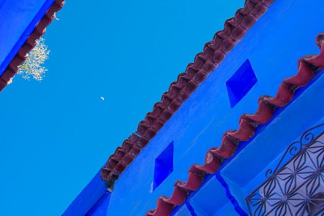 Rooflines Under a Half Moon