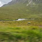 Jen_3869Scotland