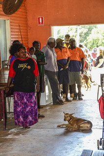 Remote polling at Warruwi/Goulburn Island