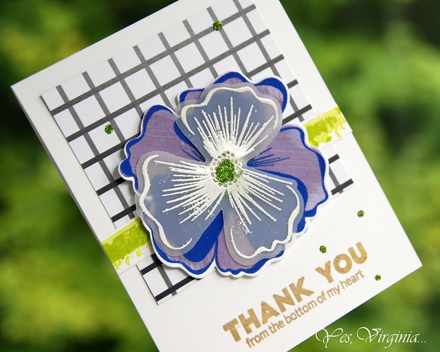 thank you (2)