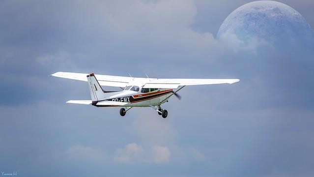 Fly - 7385