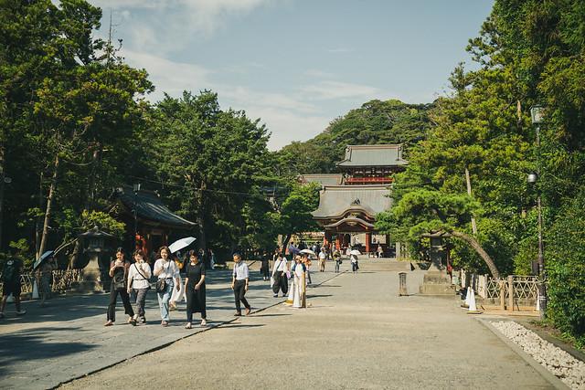 Sigma 45mm F2.8 で撮る鎌倉 鶴岡八幡宮
