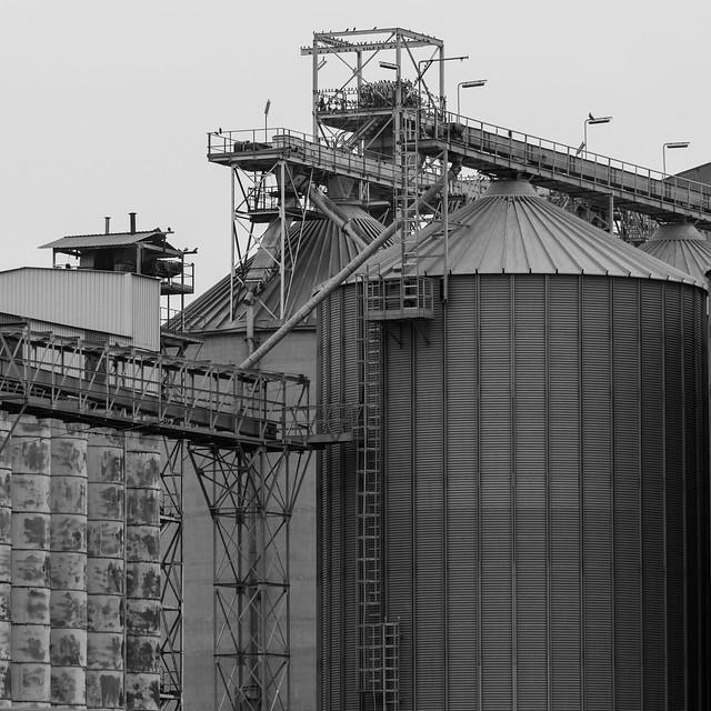 Silos.Porto S.Vitale. Silos. S.Vitale's harbor B&W (Industrial)
