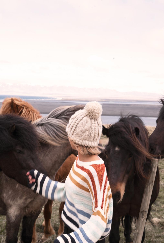 08hvammstangi-iceland-icelandichorses-horses-animal-travel-landscape
