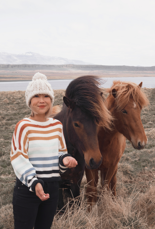 07hvammstangi-iceland-icelandichorses-horses-animal-travel-landscape