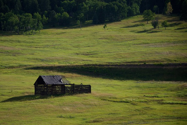 Ruin in a Green Meadow