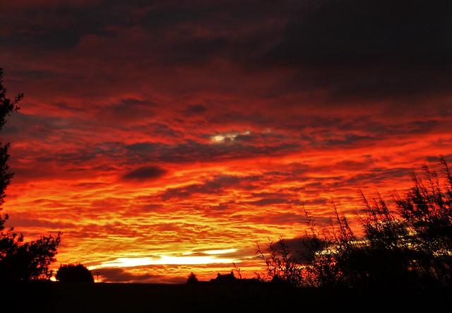 Sky of Fire..x