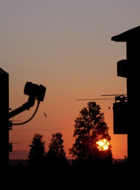 განთიადი / Sunrise