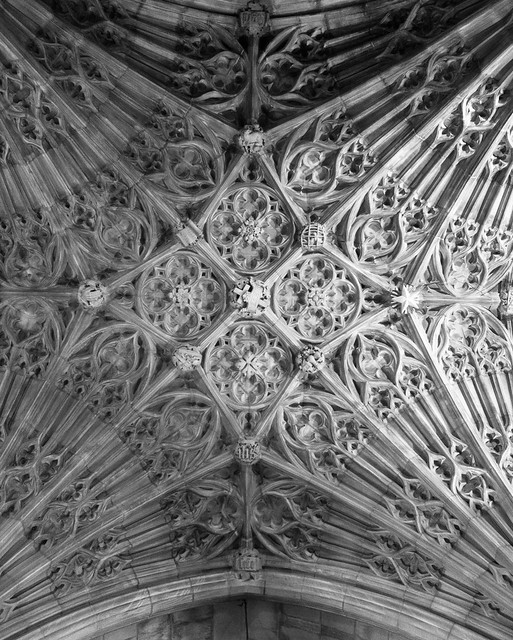 National Cathedral Pattern