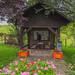 Mooie schuilhut/picknickplek in Braunlauf