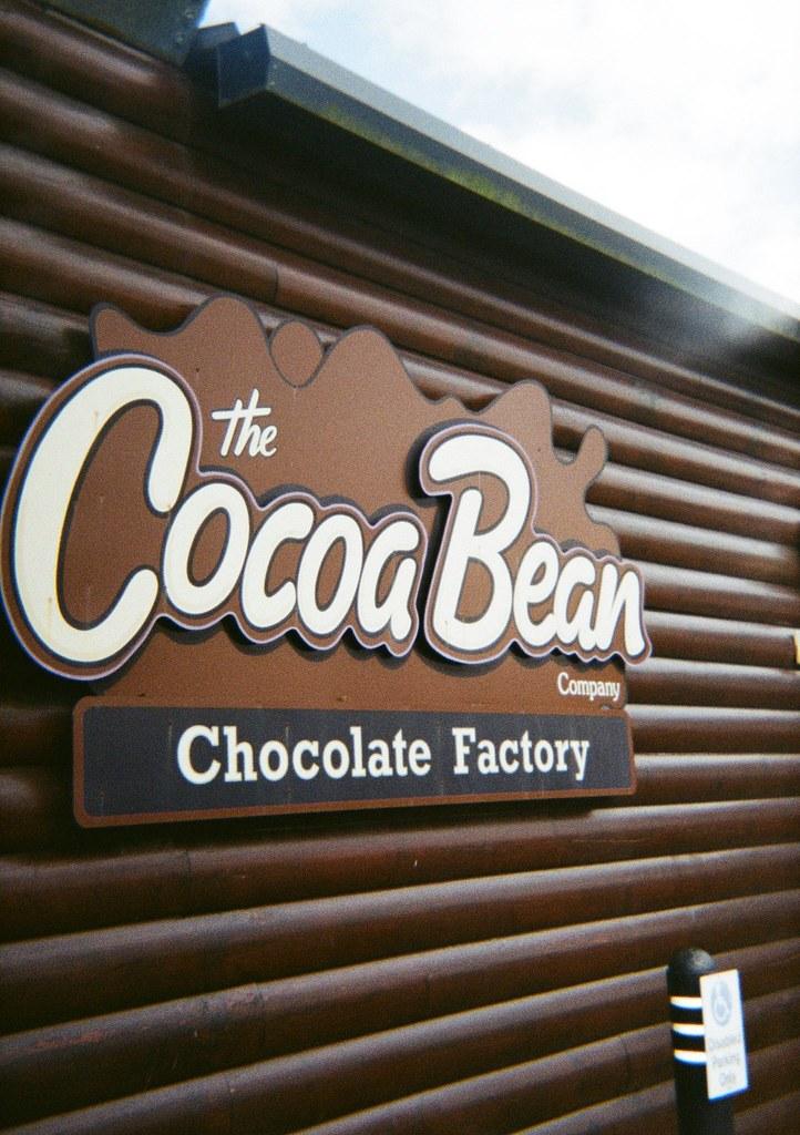 The Cocoa Bean
