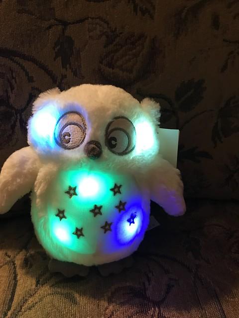 lit owl