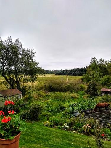 hdr michigan usa september 2019 country rural