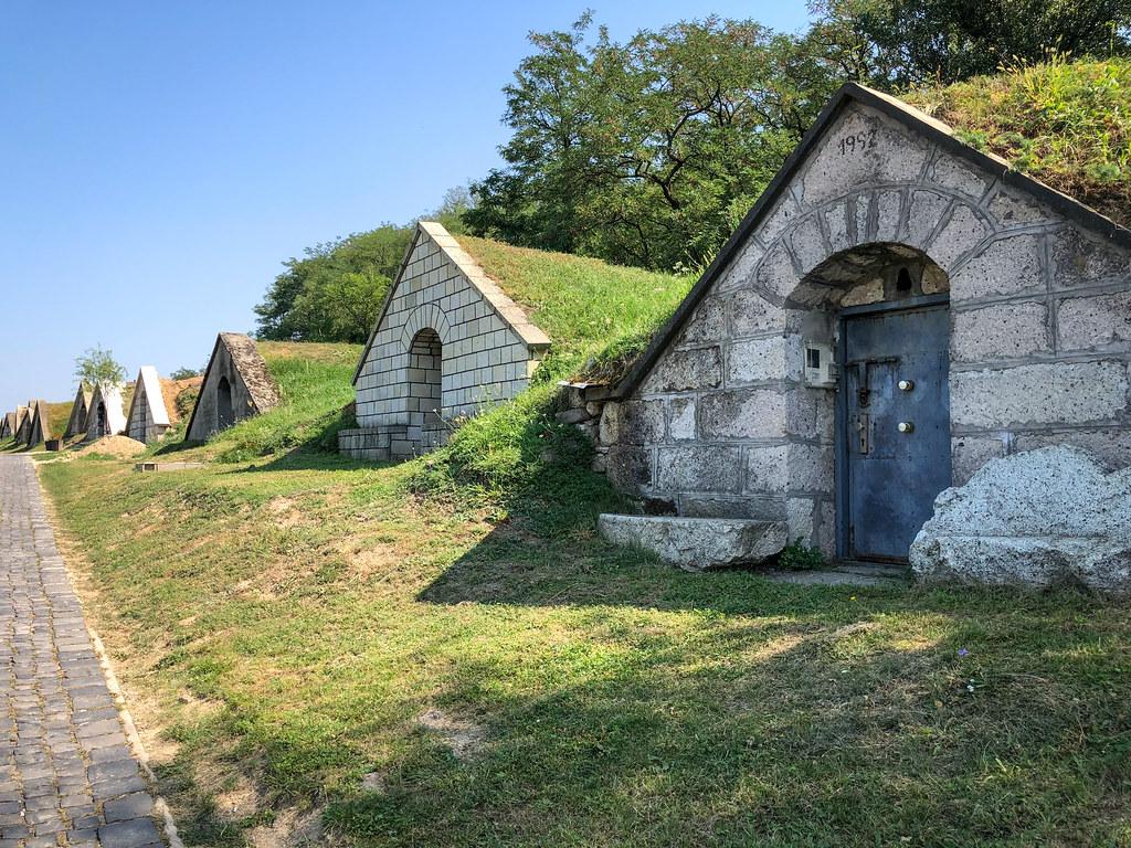Tokaj Gombos-hegyi pincesor