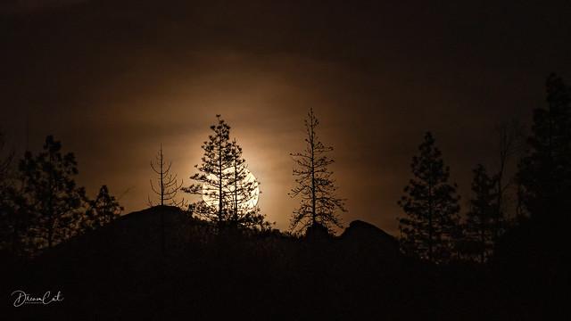 Full moon at Yosemite