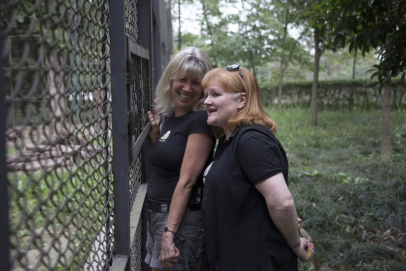 Jill and Lesley tour the Chengdu sanctuary