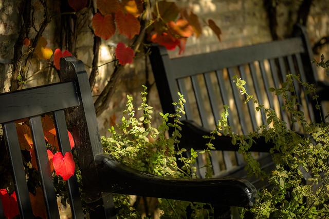 A romantic place to sit