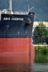 AMIS CHAMPION