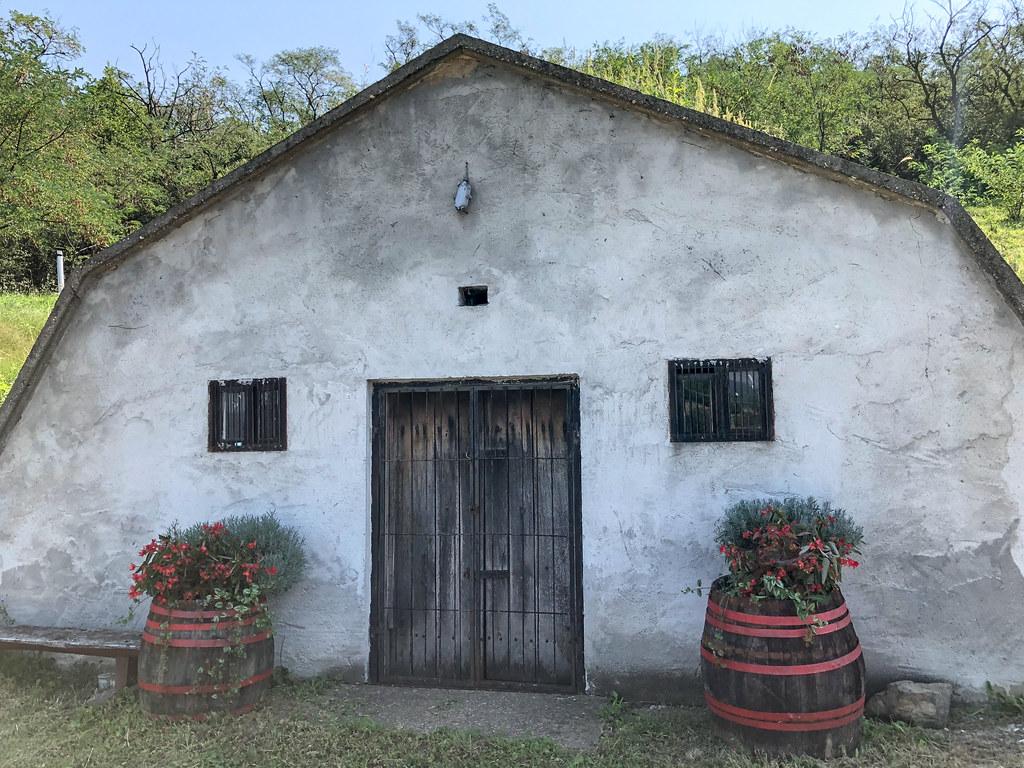Tokaj Gombos-hegyi pincesor-6