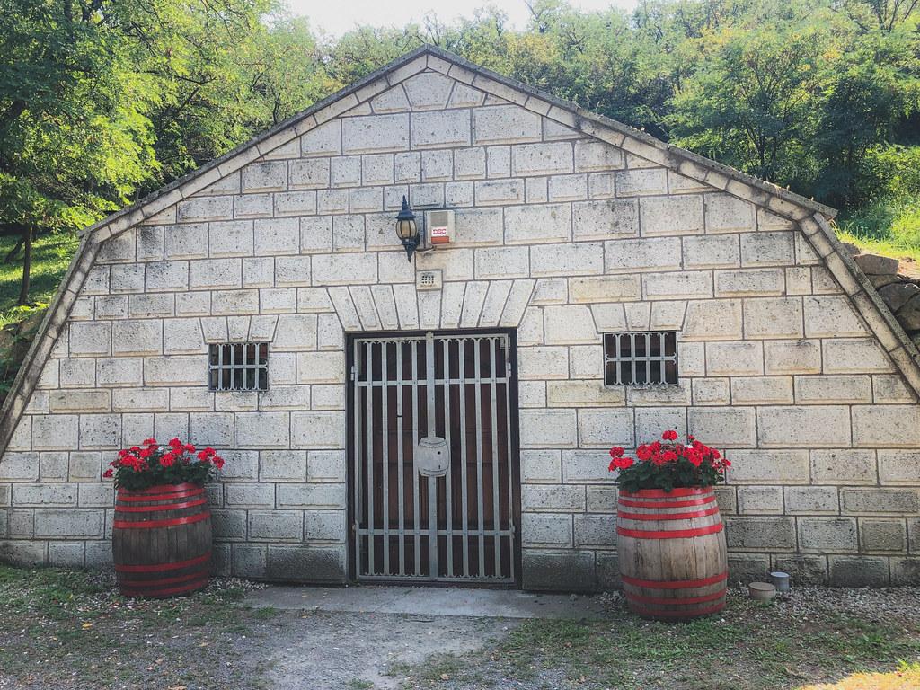 Tokaj Gombos-hegyi pincesor-8