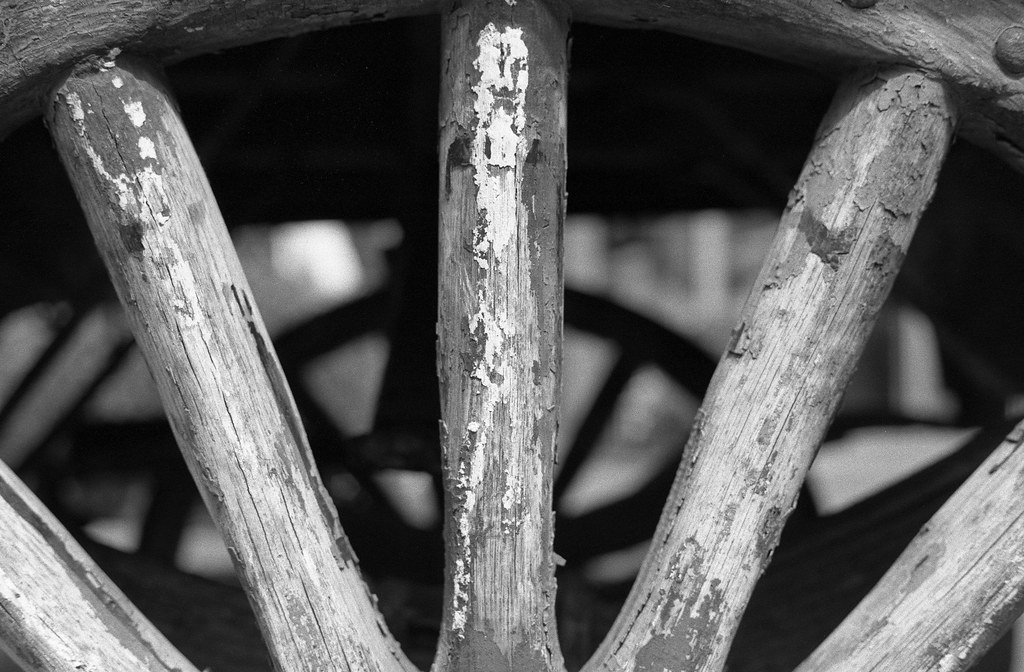 Camera Review Blog No. 112 - Canon EOS 650