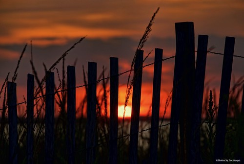 sealifesbeauty lewesde lsd lowerslowerdelaware lewes sussexcounty de delaware darkness evening eveninglight eveningskies fence fenceline fencefriday friday fencepost silhouette silhouettes sunset sun sunlight sky clouds dunegrass dune delawarebay horizon watchingthesunset hff capehenlopen capehenlopenstatepark park statepark