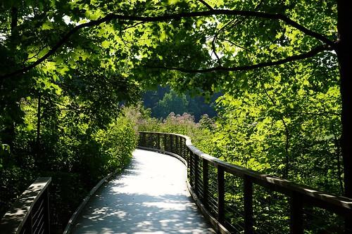 longwood gardens pennsylvania landscape meadow