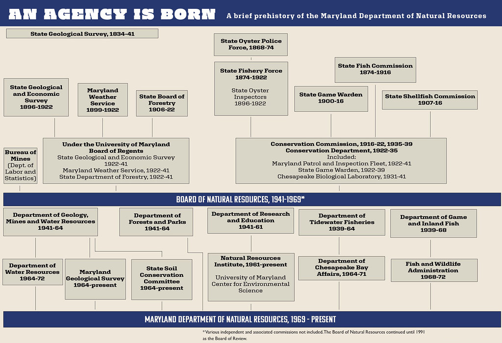 Chart of evolution of the agency