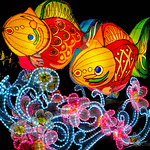 Fish Lantern