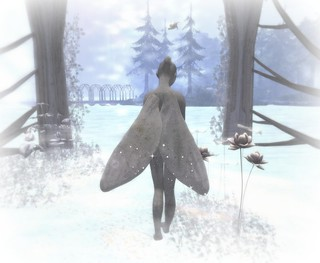 Faerie in the Mist
