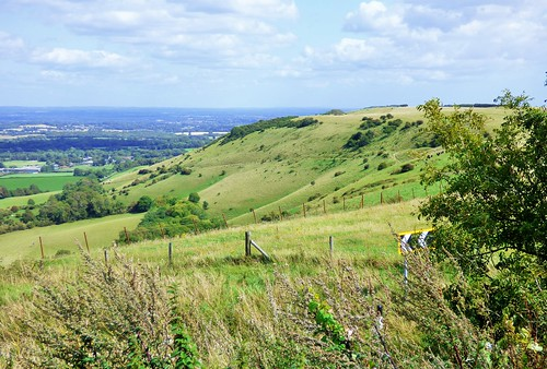 Ditchling Beacon | by grassrootsgroundswell