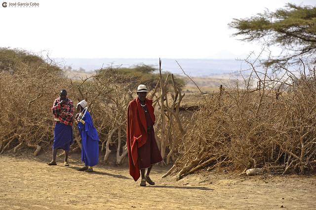 20190723 Tanzania-Ngorongoro (39) R01