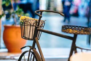 Tesoro 8 - una bicicleta con cesta