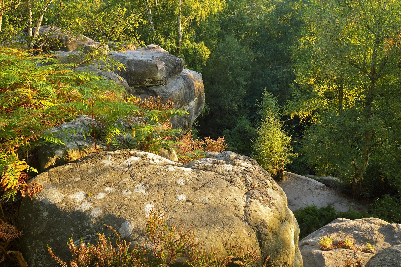 Rocks, September Evening