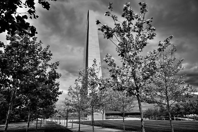 In the Time After Noon, I Walked Amongst the Trees (Black & White, Gateway Arch National Park)