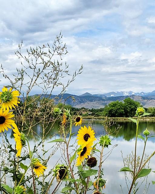 Twin Lakes, Gunbarrel, Colorado