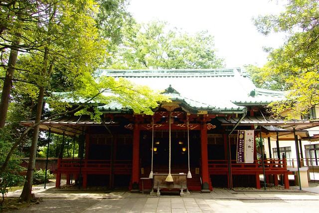 akasakahikawajinja_022