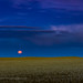 Friday the 13th Harvest Moonrise over Wheatfield