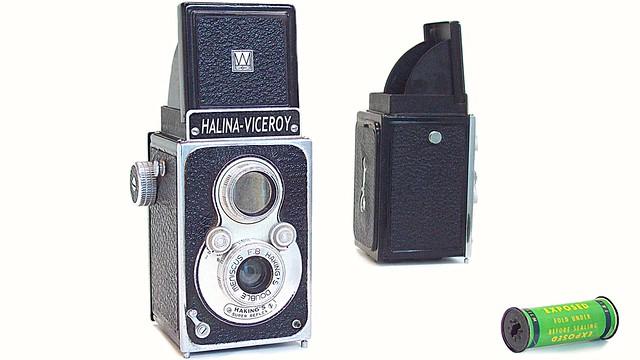 Halina Viceroy
